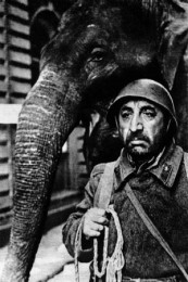 Кадр из фильма «Солдат и слон»