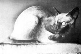 Гюрджян. Сиамская кошка. 1926